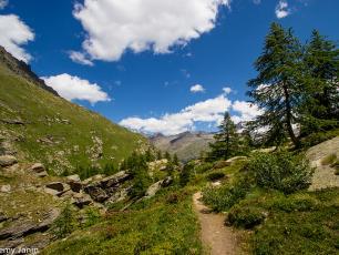 Gran Paradiso National Park - @ Photo Jeremy Janin